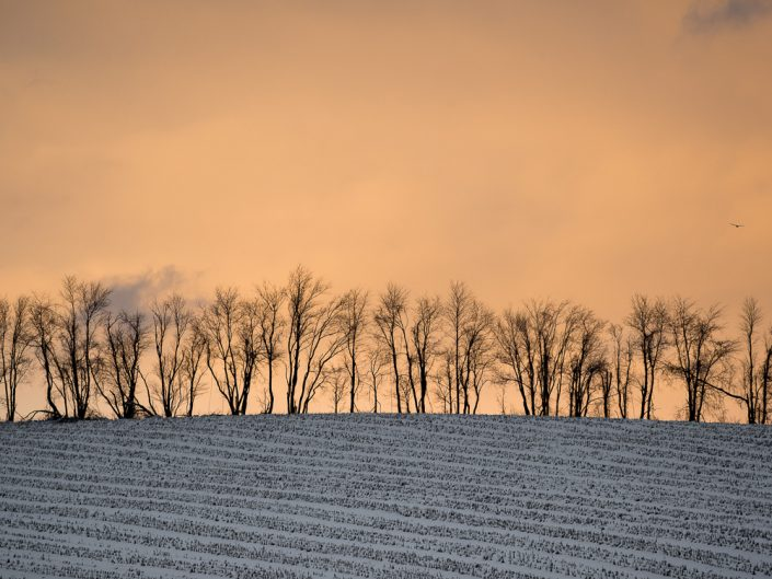 Hillsdale Winter | Upstate NY Winter Sunset Birds Landscape Photograph by Dave Butterworth | EyeWasHere Playing With A Camera, Upstate NY Landscape Photography