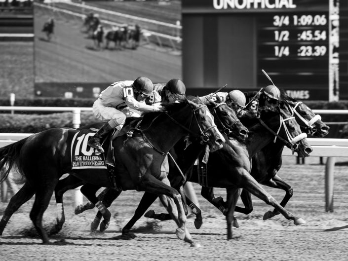 Black and White Horse Racing Photo   Saratoga Race Track Photography   Saratoga Race Course   Horse Racing   Thoroughbred   Equine   Equestrian   Photographer Dave Butterworth   EyeWasHere   Eye Was Here Photography